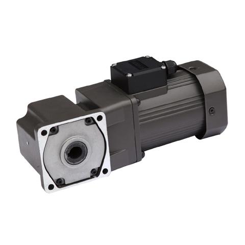 Ac Hollow Shaft Gear Motor Series Small Ac Dc Motors